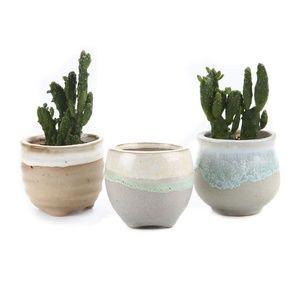 Other - Adorable succulent plant pots